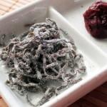海藻と海草の違い ~昆布がおせち料理に入っている理由